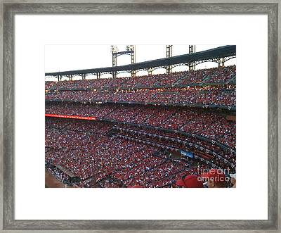 Cardinals Red Framed Print