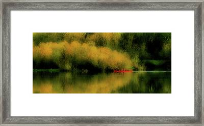 Carefree Afternoon Framed Print by Bonnie Bruno