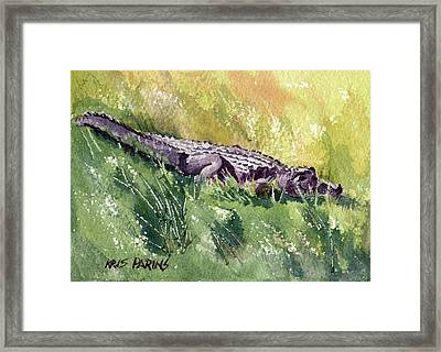 Carefree Carnivore Framed Print by Kris Parins