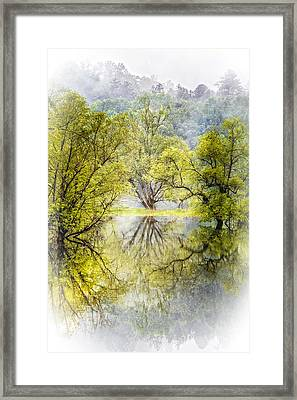 Caress In The Mist Framed Print by Debra and Dave Vanderlaan