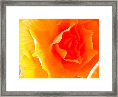 Caress Of A Woman Framed Print by Edan Chapman