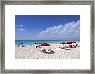 Caribbean Blue Framed Print by Stephen Anderson