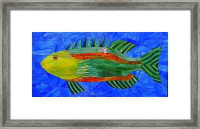 Caribbean Grouper Framed Print by Charles McDonell