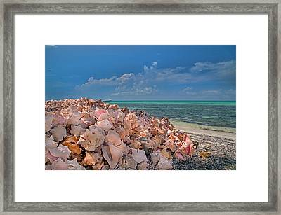 Caribbean Main Course Framed Print
