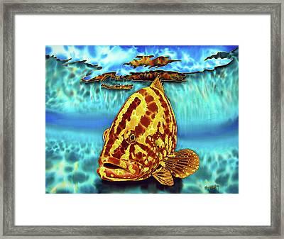 Caribbean Nassau Grouper  Framed Print by Daniel Jean-Baptiste