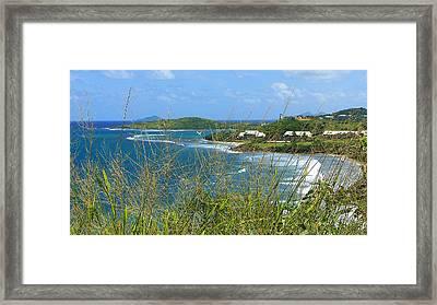 Caribbean Queen Framed Print