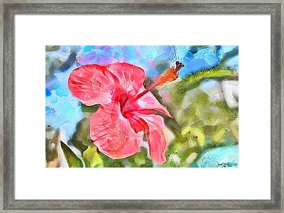 Caribbean Scenes - Hibiscus Framed Print by Wayne Pascall