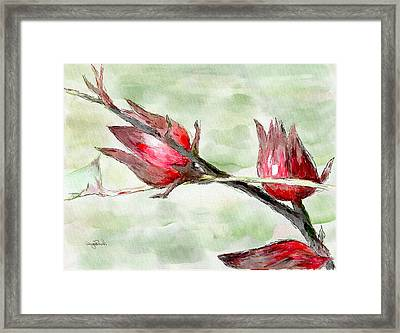 Caribbean Scenes - Sorrel Plant Framed Print by Wayne Pascall