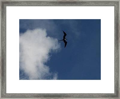Caribbean Sky Framed Print