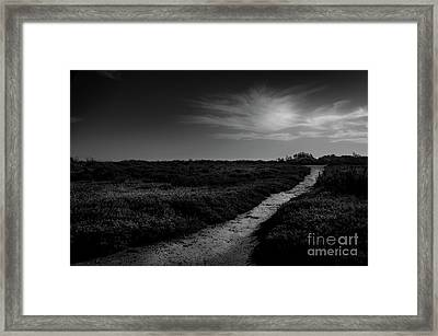 Carmargue ,black And White. Framed Print by Robert Brown