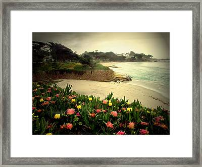 Carmel Beach And Iceplant Framed Print by Joyce Dickens