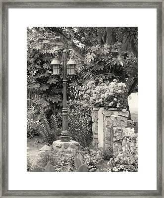 Framed Print featuring the photograph Carmel Garden by Gordon Beck