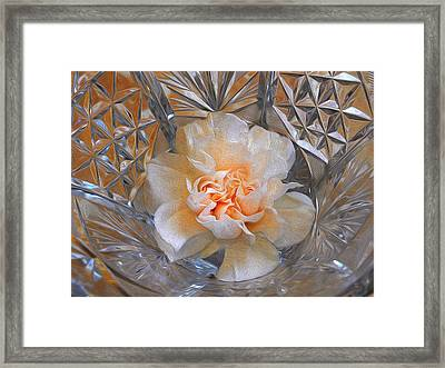 Carnation In Cut Glass 7 Framed Print