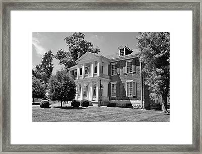 Carnation Plantation Framed Print