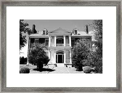 Carnation Southern Estate Framed Print by Peggy Leyva Conley