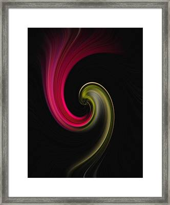 Carnation Twirl Framed Print