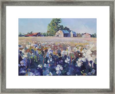 Carolina Cotton II Framed Print