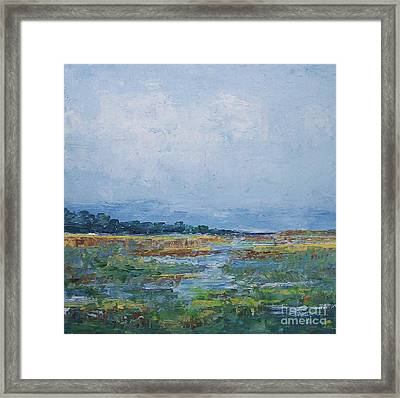 Carolina Country Blues Framed Print by Gail Kent