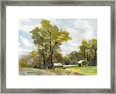 Carolina Farm Field Framed Print