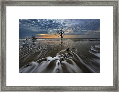 Carolina Lowcountry Framed Print by Rick Berk