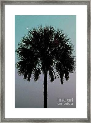 Carolina Moon Framed Print by Melanie Snipes