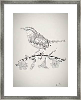 Carolina Spring Framed Print by Vanessa Cole