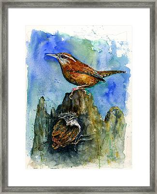 Carolina Wren And Baby Framed Print by John D Benson