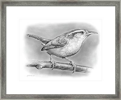 Carolina Wren Framed Print by Greg Joens