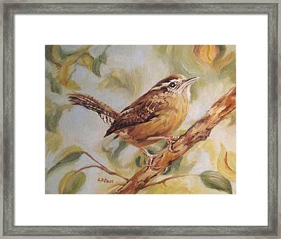 Carolina Wren II Framed Print by Cheryl Pass