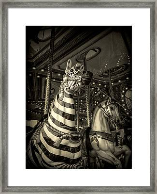 Framed Print featuring the photograph Carousel Zebra by Caitlyn Grasso