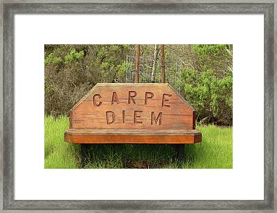Framed Print featuring the photograph Carpe Diem Bench by Art Block Collections
