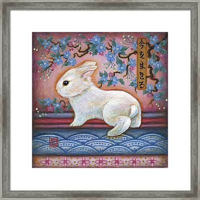 Carpe Diem Rabbit Framed Print