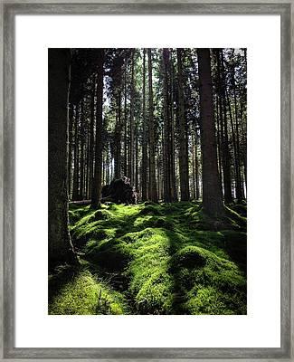 Carpet Of Verdacy Framed Print