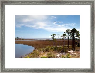 Carrabelle Salt Marshes Framed Print by Rich Leighton
