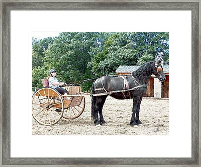 Carriage Driving Framed Print by David Syers