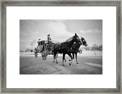 Carriage Ride In Williamsburg Framed Print by Rachel Morrison