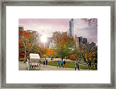 Carriage Walk Framed Print by Diana Angstadt