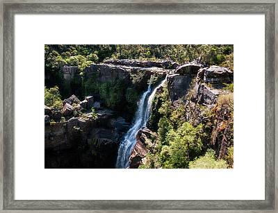 Carrington Falls Framed Print by Daniela Constantinescu