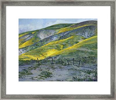 Carrizo Spring Mustard Framed Print