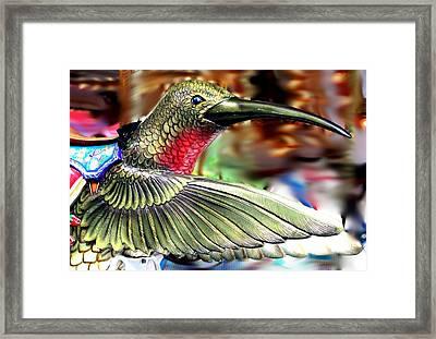 Carrousel Hummingbird Framed Print