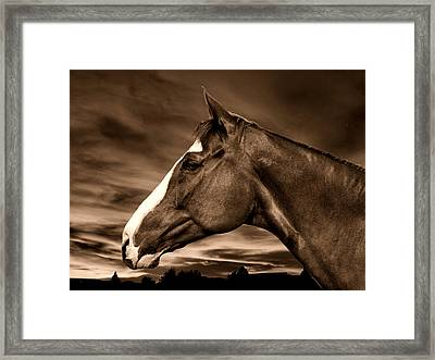 Carsen Sepia Framed Print by Irma BACKELANT GALLERIES