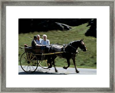 Cart Framed Print by Michael Diggin