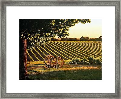 Cart Wheels At Barossa Valley Vineyard, South Australia Framed Print by Peter Walton Photography