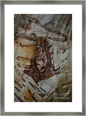 Carved Forever Framed Print by Eva Maria Nova