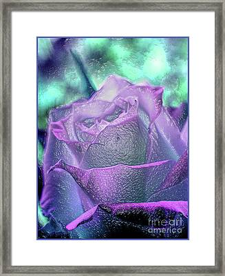 Framed Print featuring the photograph Carved Rose by Lance Sheridan-Peel
