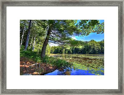 Cary Lake In August Framed Print