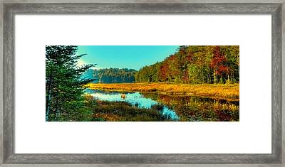 Cary Lake Panorama Framed Print