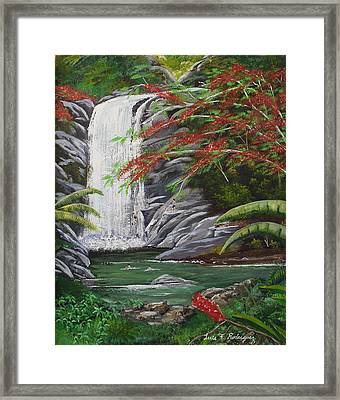 Cascada Tropical Framed Print