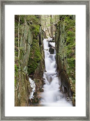 Cascade Brook - Flume Gorge Scenic Area New Hampshire Framed Print by Erin Paul Donovan