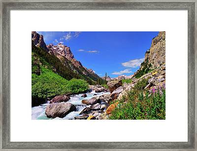 Cascade Canyon Framed Print by Greg Norrell